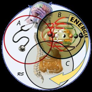 tre cerchi Roland Solère 155 modeli terapeutici non farmacologici